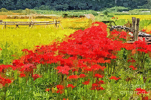Beverly Claire Kaiya - Red Spider Lilies Vivid Rice Field Rural Painterly