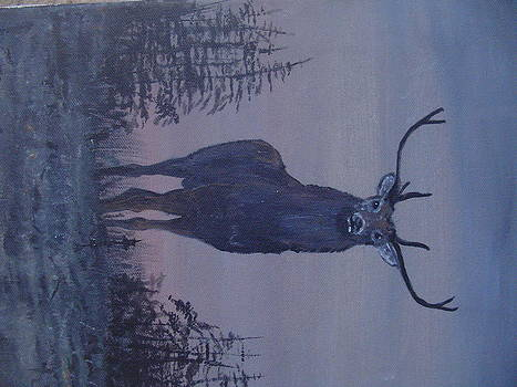 Red Stag by Stephen Thomson