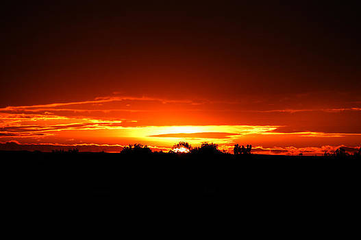 Red Sunset by Shirin McArthur