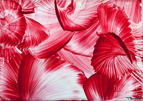 Simon Bratt Photography LRPS - Red swirls background