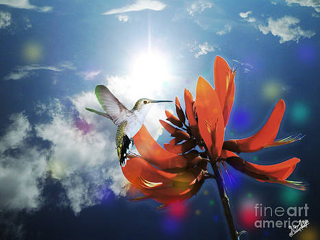 Red Tiger Claw and Hummingbird by Artist Nandika  Dutt