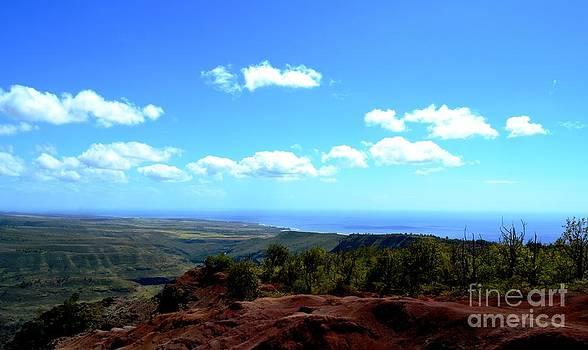 Red to Blue Kauai by Greg Cross