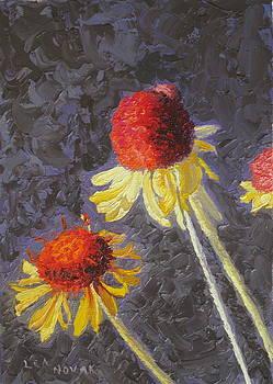 Lea Novak - Red Top Wildflowers