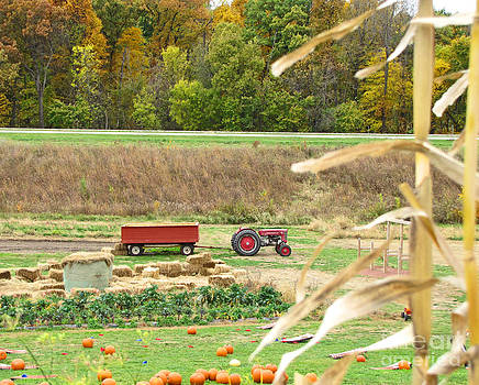 Minding My  Visions by Adri and Ray - Red Tractor and Wagon on Pumpkin Farm during Autumn