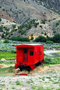 Sophie Vigneault - Red Train Wagon
