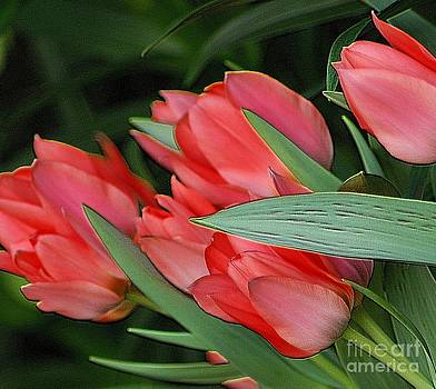 Red Tulips by Kathleen Struckle