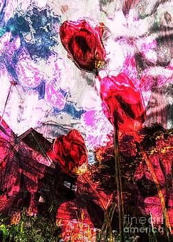 Red tulips to summer by Dana Hermanova