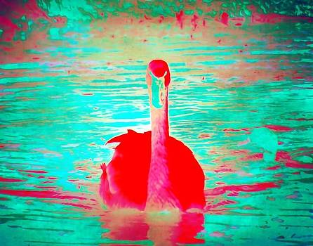 Red Velvet Swan by Jared Johnson