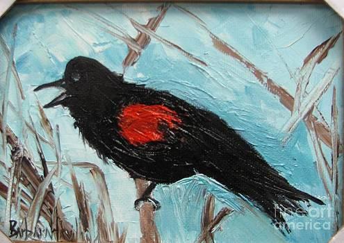 Red-Winged Blackbird by Barbara Haviland