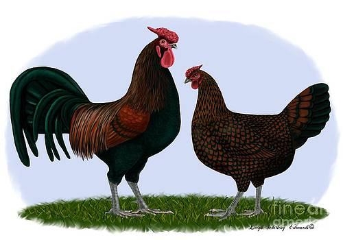 Redcap Rooster and Hen by Leigh Schilling