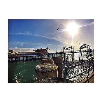 Redondo | Pier 🌊 by Derrick Hamilton