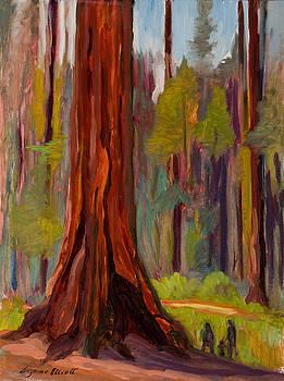 Redwood Giant by Suzanne Elliott