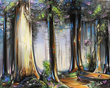 Redwoods by Jennifer Treece