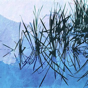 David Pringle - Reed Abstract