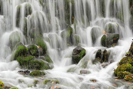 Reed Spring Cascade in the Missouri Ozarks by Greg Matchick