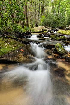 Reedy Cove Creek by Dustin Ahrens