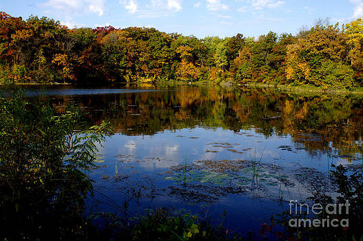 Refection Fall at Ritter Park Lakeville MN by Tina Hailey