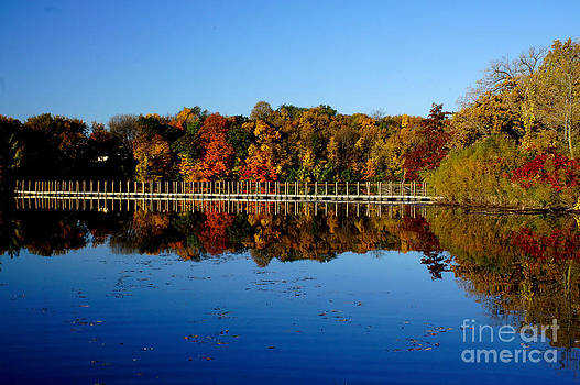 Refection Fall In Prior Lake Mn by Tina Hailey