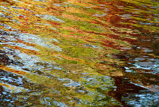 Reflected Autumn Colours by Rob Huntley