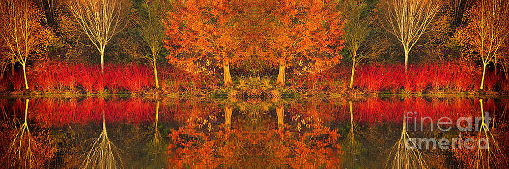 Reflected Shades of Autumn by Lisa Cockrell