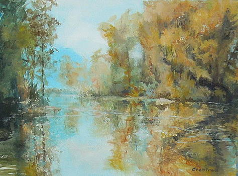 Reflecting on Reflections by Elizabeth Crabtree