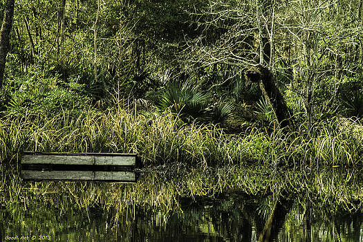 Reflecting Pond by Good I Art Photography