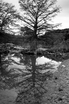 Reflection by Erica Stubbs