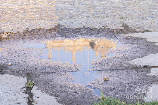 Reflection In The Puddle by Stefano Piccini