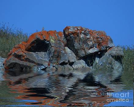 Reflection by Michael Lovell