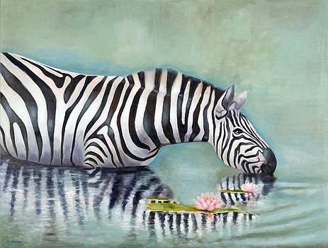 Zebra Reflection by Michal Shimoni