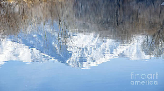 Reflection by Nicole Markmann Nelson