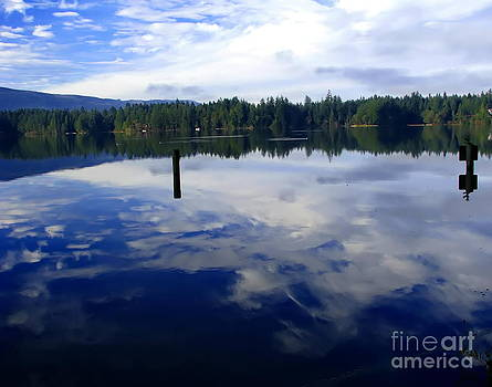 Reflection of Natures Beauty by Laurie Wilcox