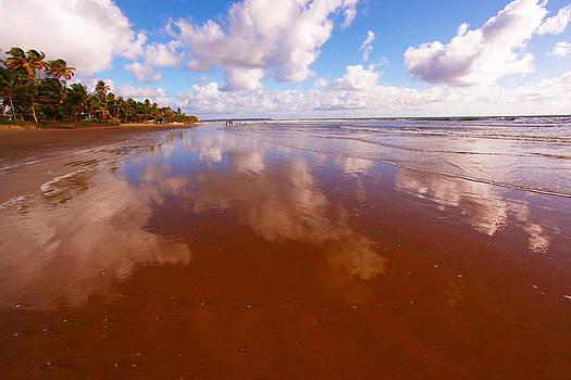 Reflection on Mayaro Beach by Dexter Browne