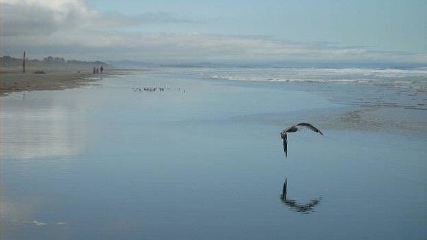 Reflection on Sand by Misty Ann Brewer