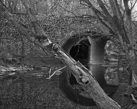 Leslie Cruz - Reflections 2