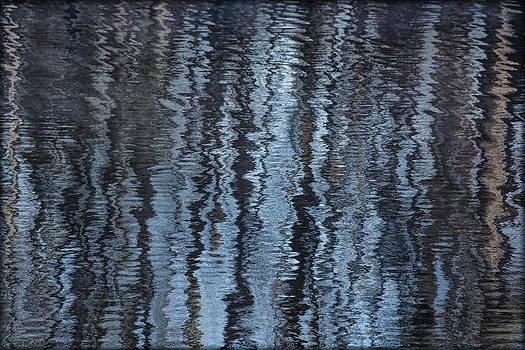 Erika Fawcett - Reflections