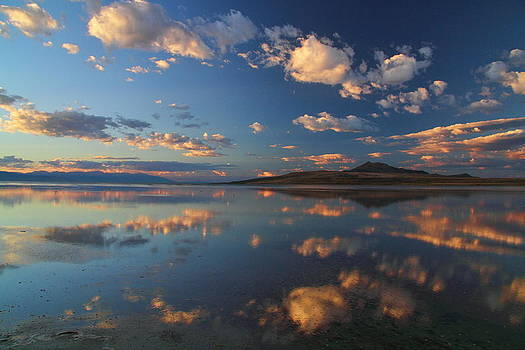 Reflections by Gene Praag