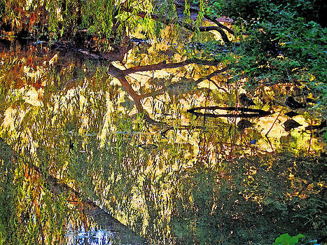Reflections In Bayou Robert by Louis Nugent