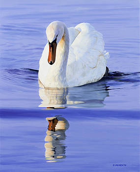 Reflections in Blue by Clive Meredith
