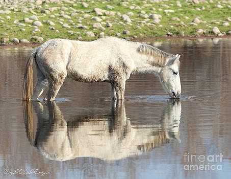 Reflections In White by Gary Michael Flanagan