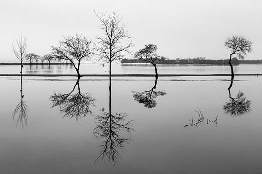 Reflections by Kathy Weigman