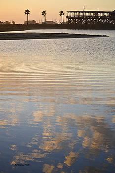 Allen Sheffield - Reflections of Dusk