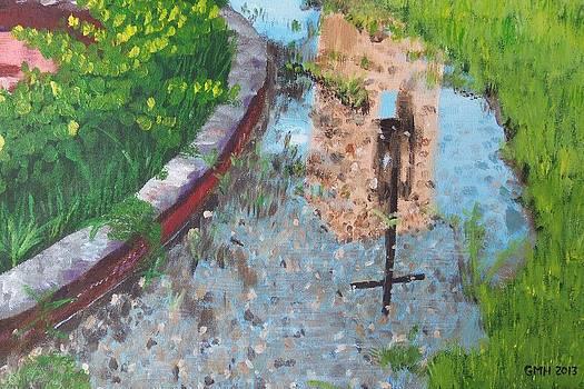 Reflections of Mercy by Glenn Harden