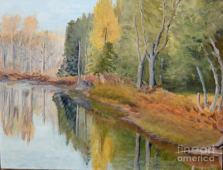 Reflections on a Frozen Pond by Marlene Petersen