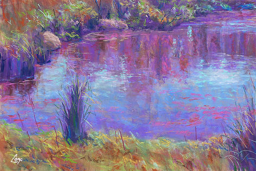 Reflections on a Pond by Michael Camp