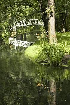 Veronica Vandenburg - Reflections on Pond