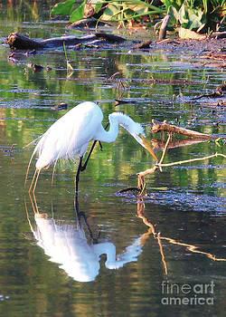 Reflections On Wildwood Lake by Geoff Crego