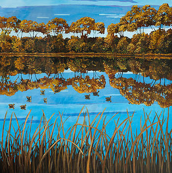 Reflections by Patty Baker