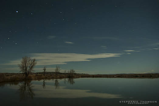 Reflections by Stephanie Thomson