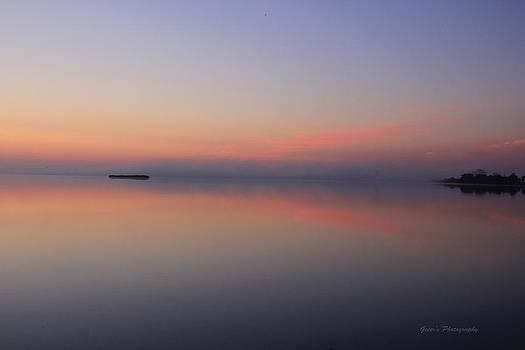 Reflections Through The Mist by Robert Geier